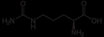L-Citrulline Molecule